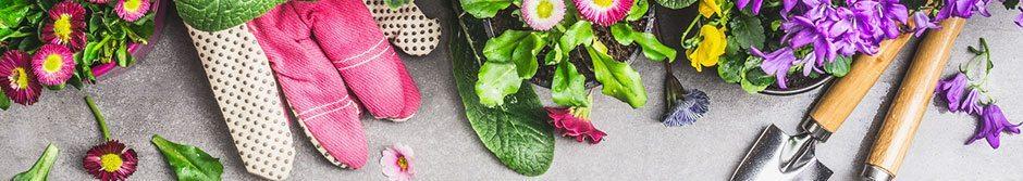Balkong & Trädgård