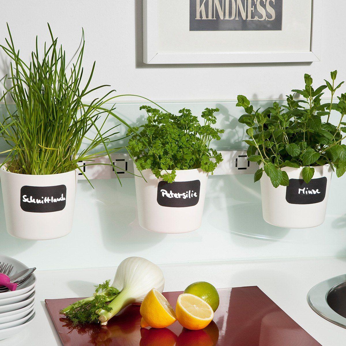 Väggfasta krukor till plantor och örter