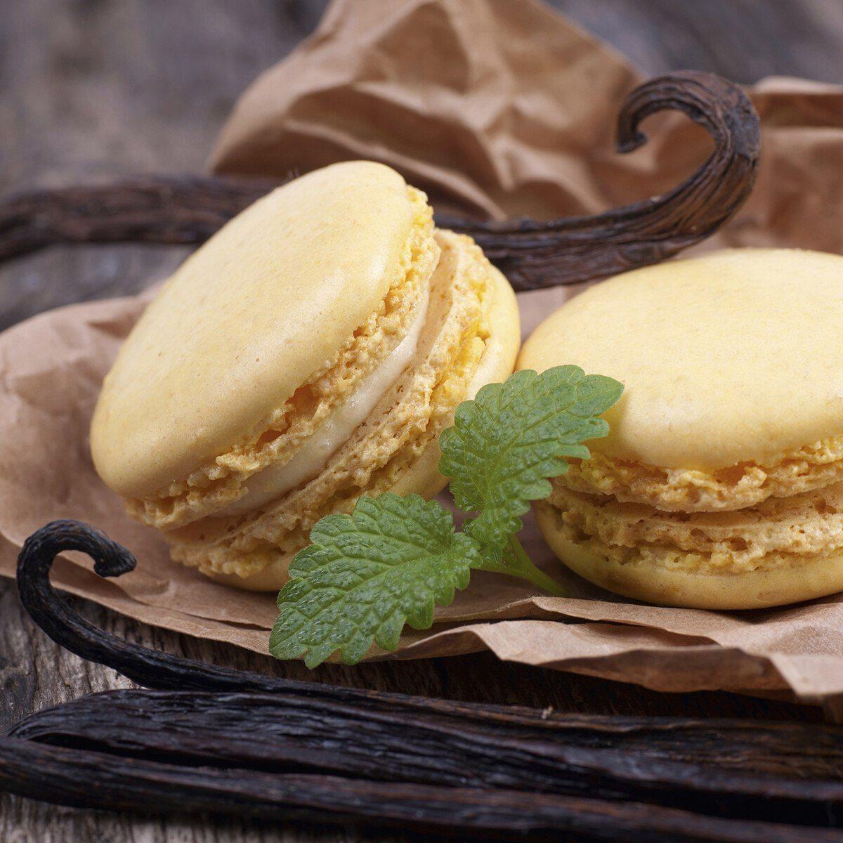 Macaron-nybörjarset i 11 delar