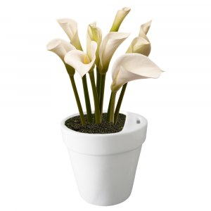 Blommig krukbössa
