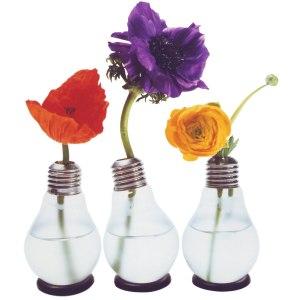 Blühbirne - Die Glühbirnenvase