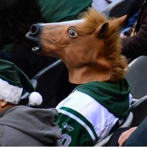 Genial hästmask