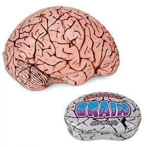 Hjärna för nödfall