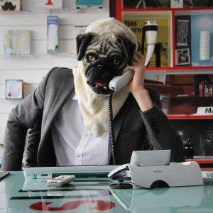 """Hundemaske """"Mr. Mops"""""""