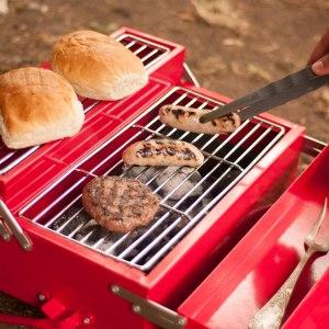 Ihopfällbar grill