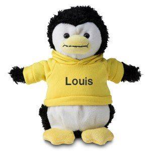 Personlig pingvin med tröja