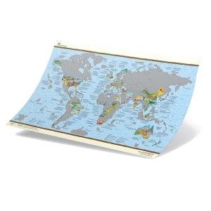 Skrapbar världskarta