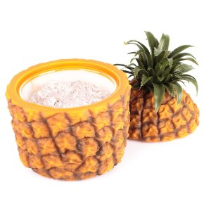 "Snygg retro-ishink ""ananas"""