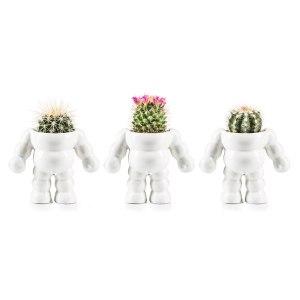 Space kaktus - rymddräkt blomkruka