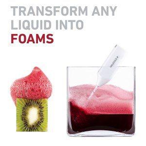 Vegane Molekularküche - Schaum